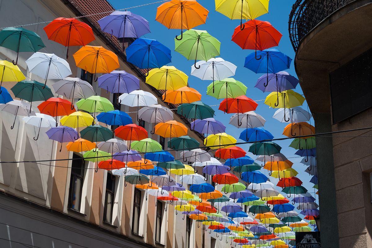 Kolorowe parasole nad ulicą Bankową
