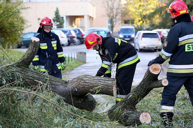 Strażacy przy usuwaniu skutków wichury