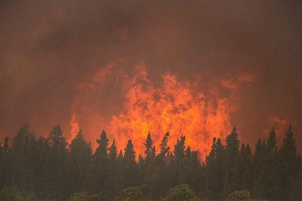 W kanadyjskiej prowincji wprowadzono stan wyjątkowy. Wszystko przez ogromne pożary