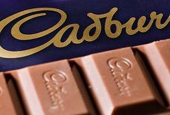 Brytyjczycy oburzeni. Ulubioną czekoladę Wyspiarzy produkują we Wrocławiu