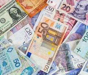 Śmiała prognoza walutowa. Cena 5 zł za euro i dolara mało prawdopodobna