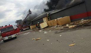 Olbrzymi pożar fabryki mebli w Mroczeniu. Dwóch strażaków trafiło do szpitala