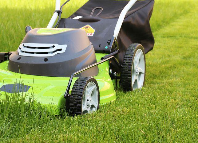 Zadbany trawnik i ogród wymagają dobrej kosiarki