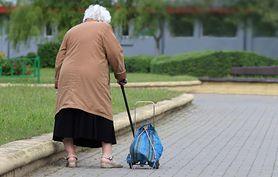 Estrogen pomoże w chorobie Parkinsona? Nowe odkrycie na Harvardzie