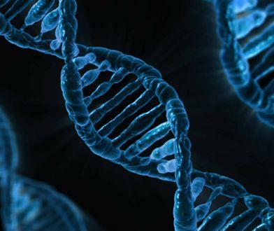 Quiz wiedzy z biologii dla ósmoklasistów
