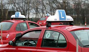 Załatwiali prawa jazdy, usłyszeli zarzuty