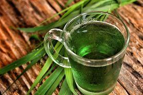 Trawa pszeniczna - napój, właściwości