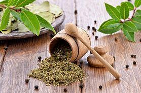Majeranek – przyprawa o leczniczych właściwościach, wartości odżywcze, zastosowanie w kuchni, maść majerankowa, napar, olej z majeranku