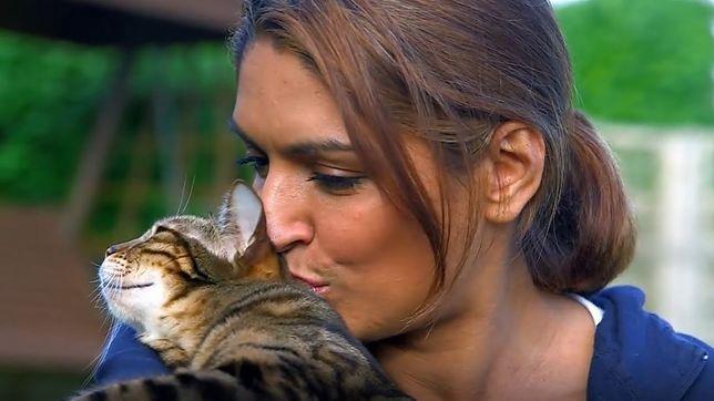 """""""Sekretne życie kotów"""" powstanie na bazie formatu """"Cats Uncovered"""""""