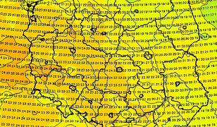 Pod koniec lipca na dobre wraca lato. Temperatura w Polsce według modelu Global Forecast System.