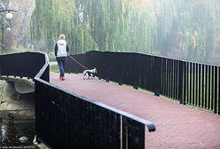 Warszawa. Wyłowiono zwłoki ze staw w parku Moczydło