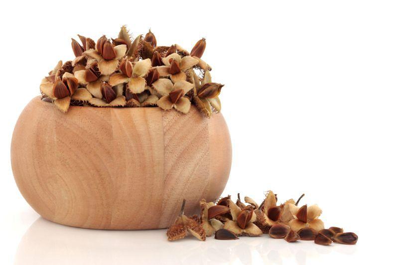 Orzeszki bukowe - smaczny dar lasu w kuchni