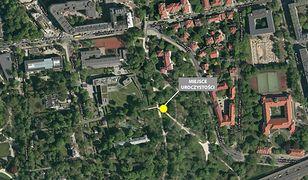 Powstał park na cześć Tadeusza Mazowieckiego