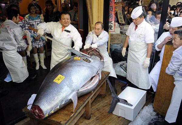 Kupił 269-kilogramową rybę. Kto to zje?