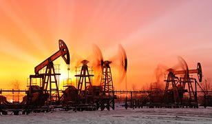 Ceny ropy zmieniają się jak na rollercoasterze. Dosłownie