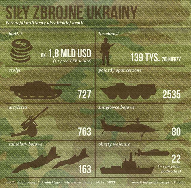 """Micheil Saakaszwili w """"FT"""": wyraźne analogie konfliktów w Gruzji i na Ukrainie"""
