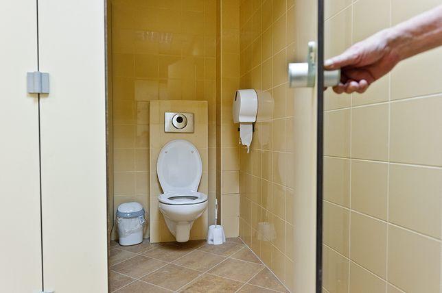 Publiczne toalety to siedlisko bakterii