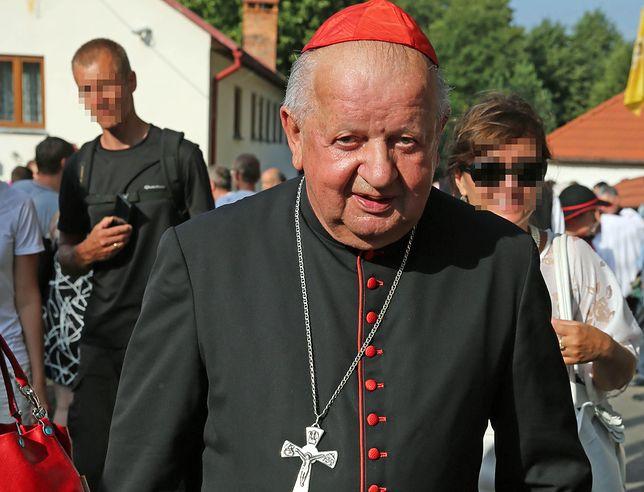 Kardynał Stanisław Dziwisz (zdj. arch.)