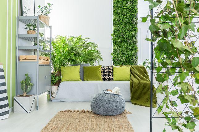 Sztuczne rośliny doniczkowe to prosty sposób na wnętrze z akcentem zieleni