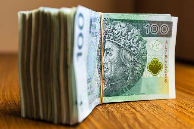 Sondaż: Polacy wypowiedzieli się na temat wynagrodzeń ministrów. Zobacz, ile ich zdaniem powinni zarabiać