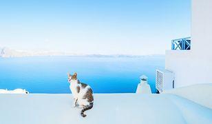 Grecja: do zakochania 5 kroków