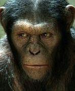 ''Rise of the Planet of the Apes'': Małpy przejmują planetę