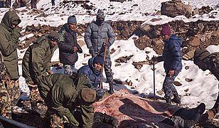 Rośnie liczba ofiar lawiny w Himalajach