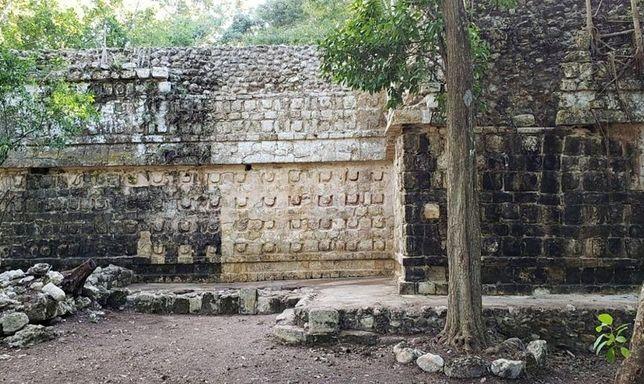 Pałac może być cennym źródłem wiedzy na temat życia pradawnych Majów
