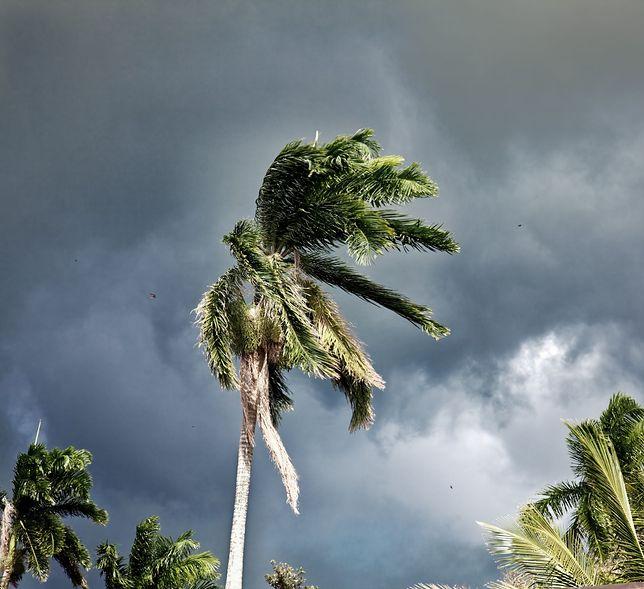 """Polak na Karaibach: """"Wszyscy się przygotowywali. Mieszkańcy wiedzieli, co się może wydarzyć"""""""
