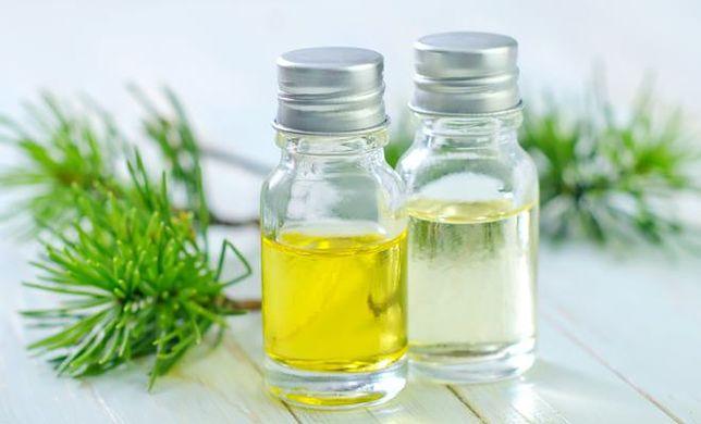 Siła pichty, czyli o zaletach olejku z jodły syberyjskiej