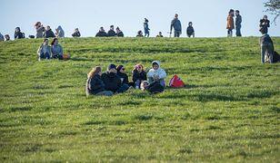 Koła na trawie. Władze San Francisco wprowadziły genialne rozwiązanie w parku