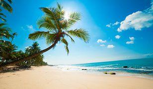 Wczasy w egzotycznych krajach zimą to marzenie wielu osób, które nie znoszą niskich temperatur