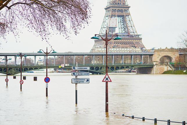 Ostatni raz tak wysoki poziom wody w Sekwanie zanotowano w 1990 r.