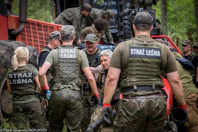 Miażdżąca opinia ws. Puszczy Białowieskiej. Szyszko idzie w zaparte