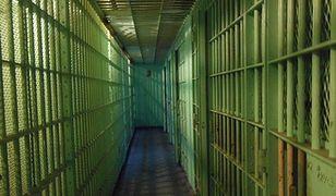 Twórca wirtualnej waluty skazany na 20 lat więzienia