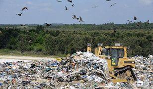 70 ton odpadów z Salwadoru nie trafi do Polski