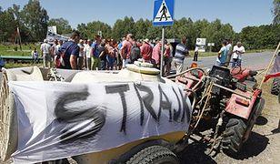 Protesty sadowników przeciwko niskim cenom skupu