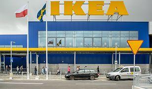 Katalog Ikei wraca w Warszawie