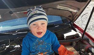 Poszukiwania 3,5 -letniego Kacperka z Nowogrodźca trwają. Dziennikarz Wirtualnej Polski nagrał film na miejscu