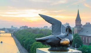 Kaliningrad. Tropem Bursztynowej Komnaty