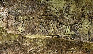 Odkryte w Turcji malowidła mogą mieć nawet więcej niż 2,5 miliona lat.