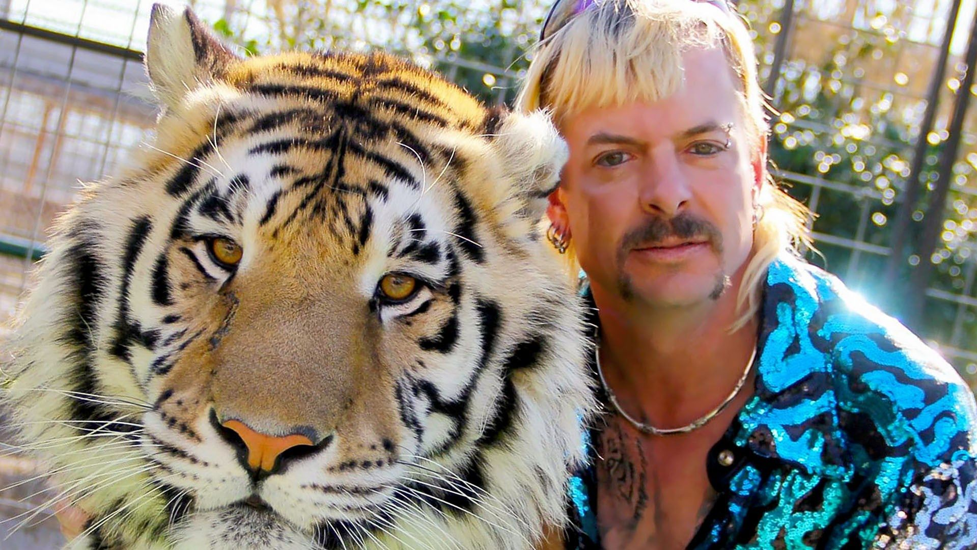 """Kadr z filmu """"Król tygrysów"""""""