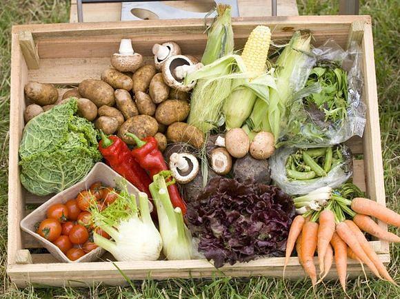Dieta na zimę - warzywa i owoce