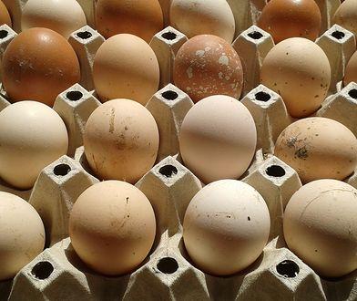 Wybieramy dobre jajka. Warto wiedzieć przed Wielkanocą