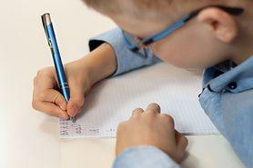Jak zorganizować kącik do nauki dla dziecka?