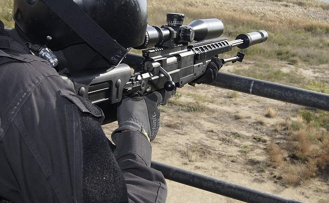 Korea Południowa wyśle snajperów, by wybili dziki z ASF
