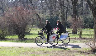 450 rowerów na godzinę. Znamy wyniki pomiarów ruchu rowerowego