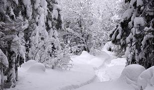 Tatry: zaspy na szlaku z Kuźnic do Doliny Gąsienicowej