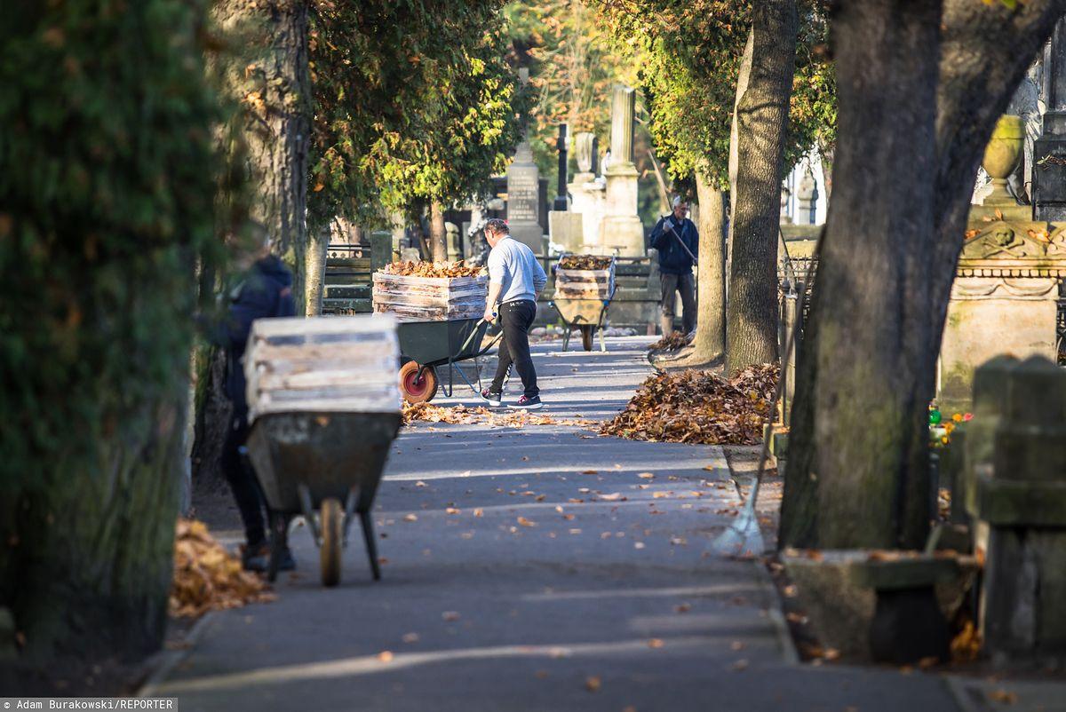 Wszystkich Świętych. Koniec dużej akcji na Starych Powązkach w Warszawie. Inwentaryzacja ułatwi odnowienie grobów