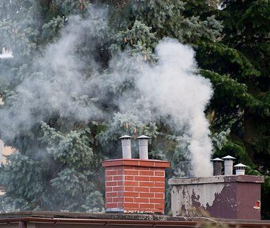 Zakaz palenia węglem może zacząć obowiązywać już w tym roku.